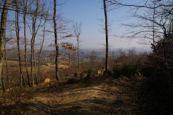 La vallée du Tarn vers Pétarri