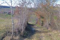 En descendant dans le vallon du ruisseau de la Saudronne
