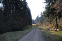 Passage rive gauche du ruisseau