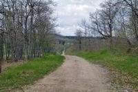 Le chemin menant aux Bruguettes