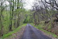 La petite route après le Pas de Pontraute