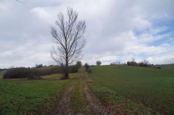Le chemin remontant vers Las Camalets