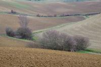 Le vallon du ruisseau des Michous