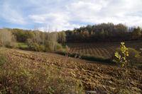 Le vallon du ruisseau de Rabistau
