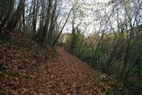 Le chemin arbore menant a St Etienne de Vionan