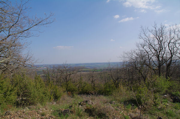 La vallée du Tarn au loin
