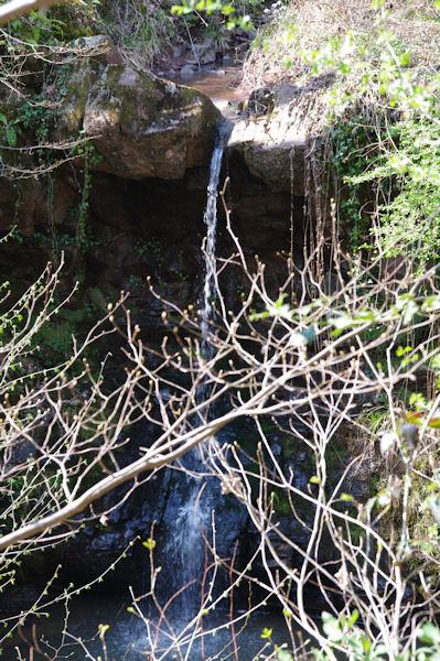 Le Saut de la Pisse sur le ruisseau de la Baronne