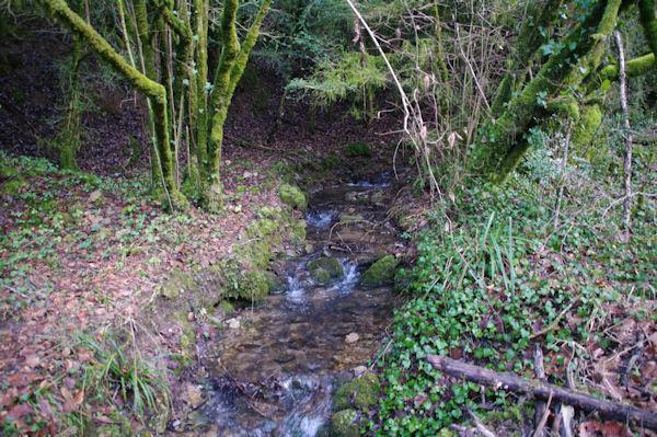 Le ruisseau de Laussière