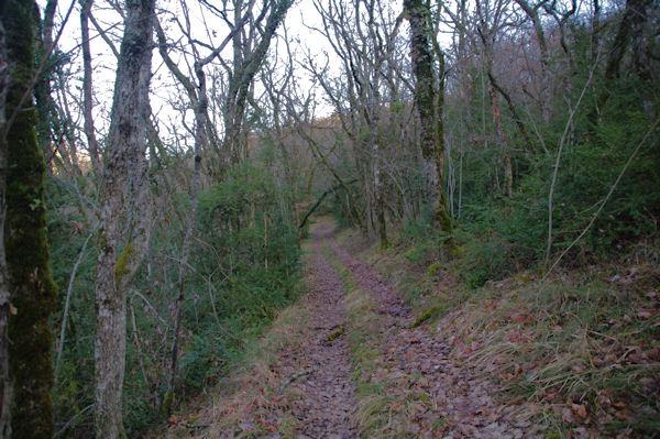 Le sentier remontant le versant Sud de la vallée de Laussière