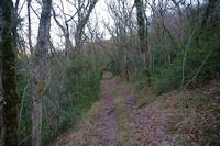 Le sentier remontant le versant Sud de la vallee de Laussiere