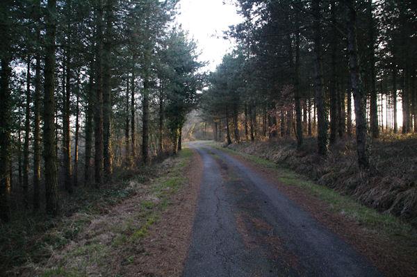 Le chemin au dessu du Col de Liberté