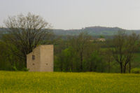 Un pigeonnier vers Le Sol, au fond, Castelnau de Montmiral