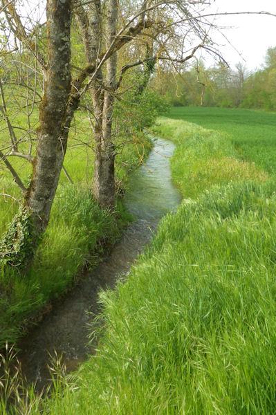 Le ruisseau de Vervère