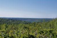 La vallee boisee de l'Aveyron depuis Bernoye