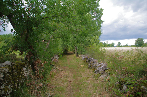 Le chemin vers Les Tombes