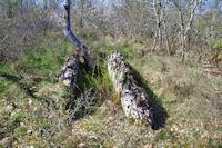 Le dolmen de Fournet