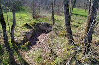 Le dolmen de Cuzoul