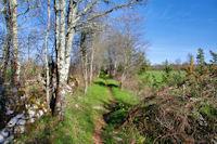 Le chemin  vesr Plantous