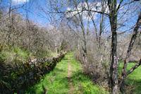 Le chemin  remontant le vallon vers Touron
