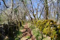 Le chemin menant à Touron