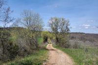 Le GR46 vers Nego-Biau