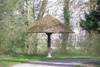 Un abri original dans le Bois de la Deûle