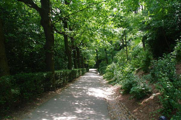 En descendant vers le Jardin des Hortensias