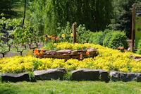 Jolies couleurs a l'entree Est du Parc de la Tete d'Or