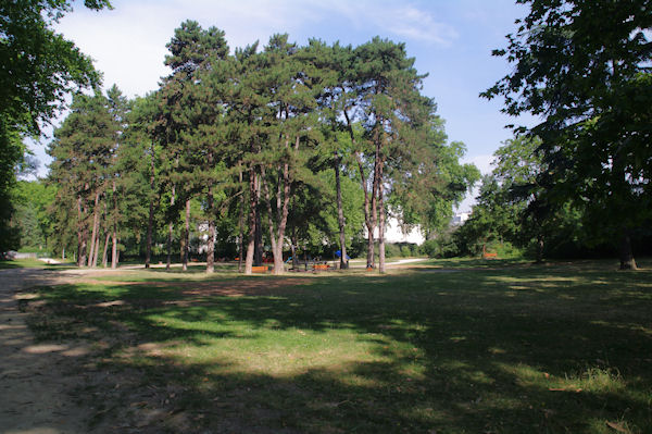 Un petit parc sur campus de l_Université Claude Bernard