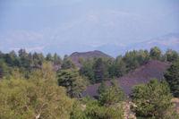 Le Monte Rosso