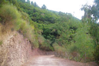 En descendant du Monte Fossa delle Felci vers Rinella