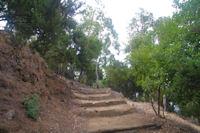Des escaliers pour monter les rudes pentes du Monte Fossa delle Felci