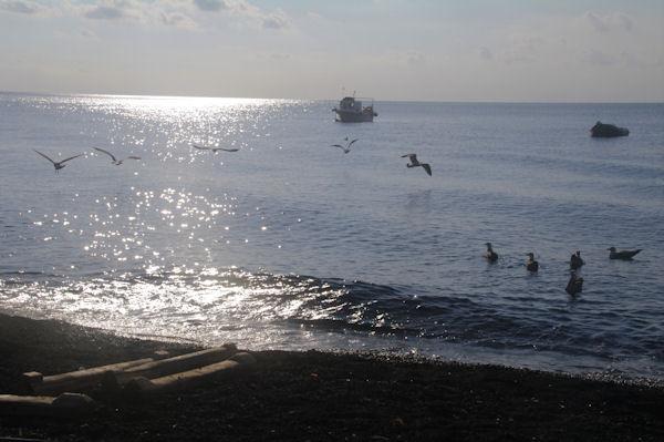 La plage de Pizzillo à Stromboli